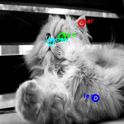 2010_001660-cat_0_ppm10.png