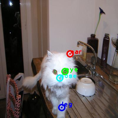 2010_001712-cat_0_ppm10.png
