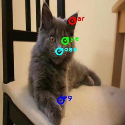 2010_002086-cat_0_ppm10.png