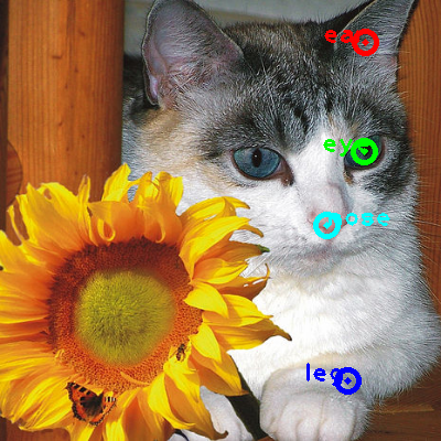 2010_002479-cat_0_ppm10.png