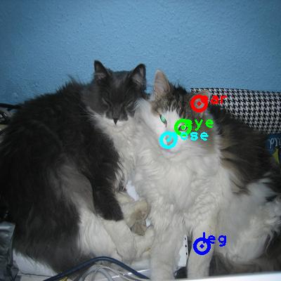 2010_002583-cat_0_ppm10.png