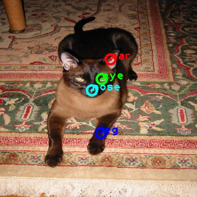 2010_002692-cat_0_ppm10.png