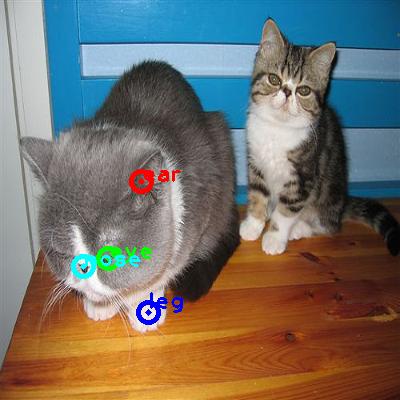 2010_002723-cat_0_ppm10.png