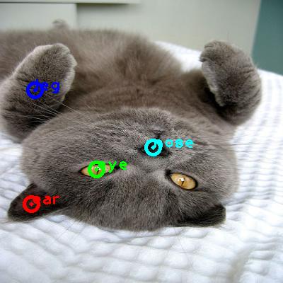 2010_002746-cat_0_ppm10.png