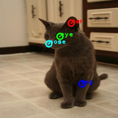 2010_002778-cat_0_ppm10.png