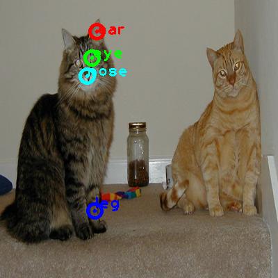 2010_002917-cat_1_ppm10.png