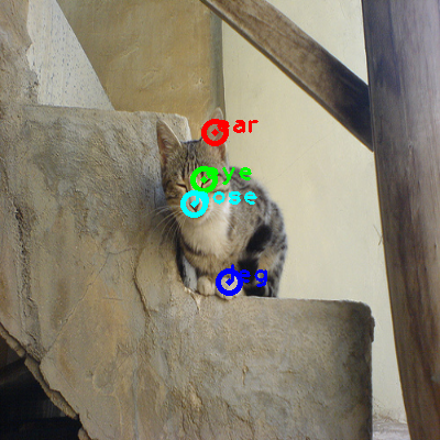 2010_003067-cat_0_ppm10.png