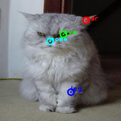 2010_003223-cat_0_ppm10.png