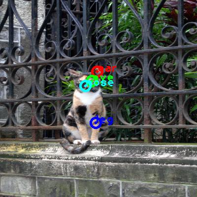 2010_003232-cat_0_ppm10.png
