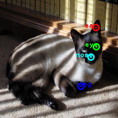 2010_003483-cat_0_ppm10.png