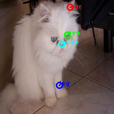 2010_003641-cat_0_ppm10.png