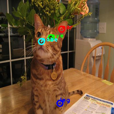 2010_003976-cat_0_ppm10.png