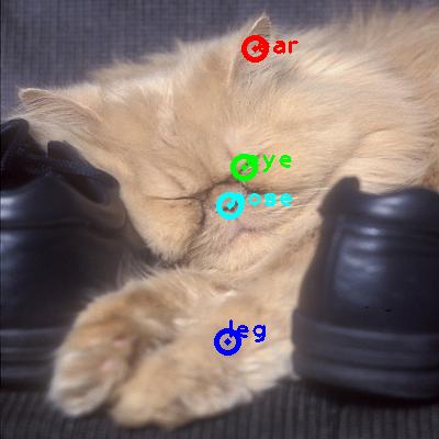 2010_004048-cat_0_ppm10.png