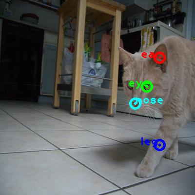 2010_004257-cat_0_ppm10.png