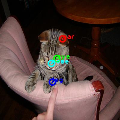 2010_004573-cat_0_ppm10.png