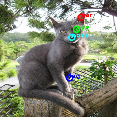 2010_004954-cat_0_ppm10.png