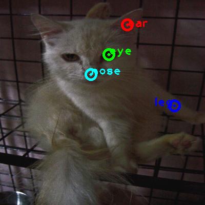 2010_005099-cat_0_ppm10.png