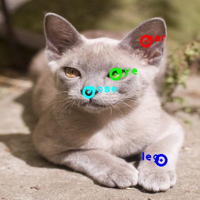 2010_005185-cat_0_ppm10.png