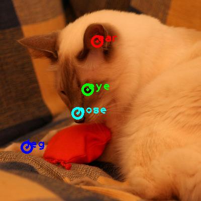 2010_005551-cat_0_ppm10.png