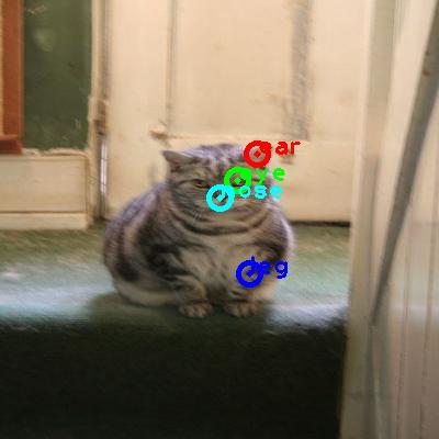2010_005652-cat_0_ppm10.png