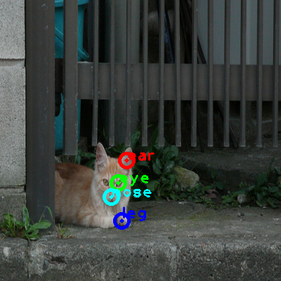 2010_005886-cat_0_ppm10.png