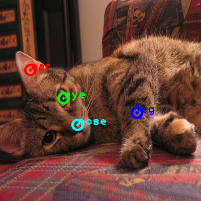 2010_005899-cat_0_ppm10.png