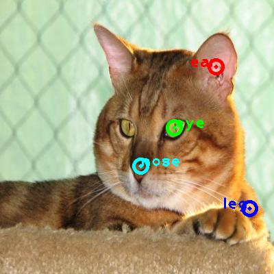 2010_006078-cat_0_ppm10.png