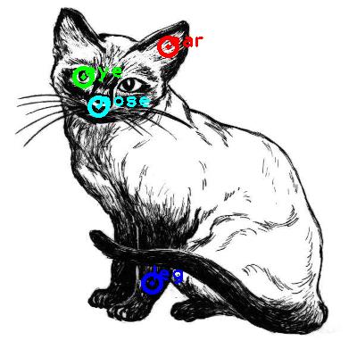 cat_0008_dipart10.png