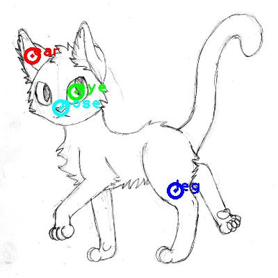 cat_0018_dipart10.png