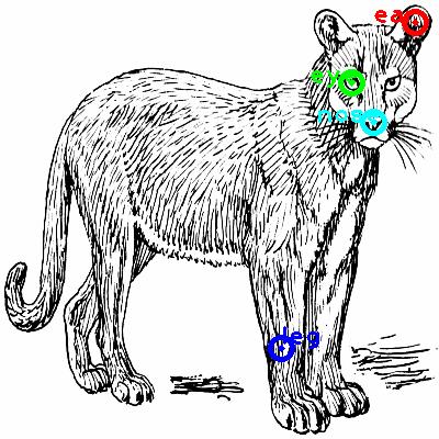 cat_0019_dipart10.png