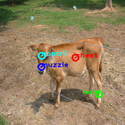 2008_002778-cow_0_ppm10.png
