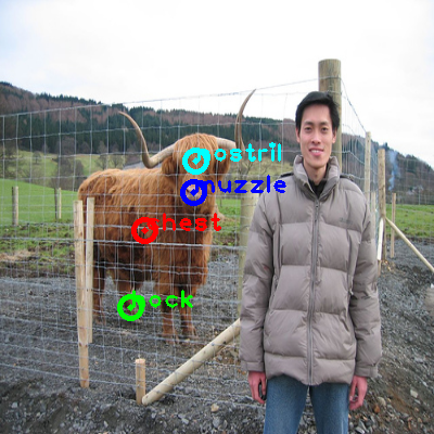 2008_007586-cow_0_ppm10.png