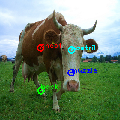 2008_008437-cow_0_ppm10.png