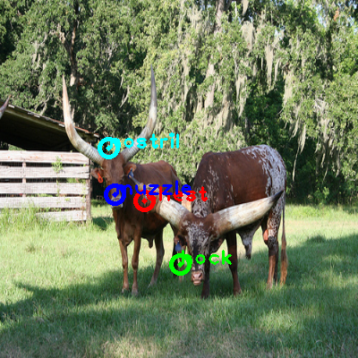 2009_000559-cow_0_ppm10.png