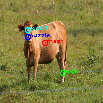 2009_001145-cow_0_ppm10.png