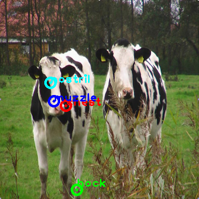 2009_001163-cow_0_ppm10.png