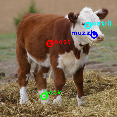 2009_003510-cow_0_ppm10.png