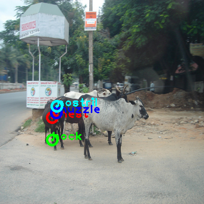 2009_003569-cow_0_ppm10.png