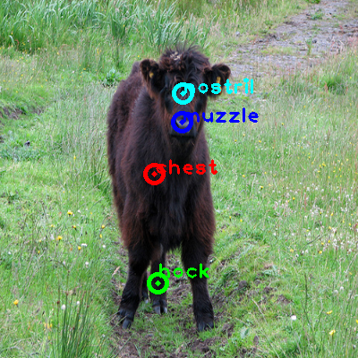 2009_004233-cow_0_ppm10.png