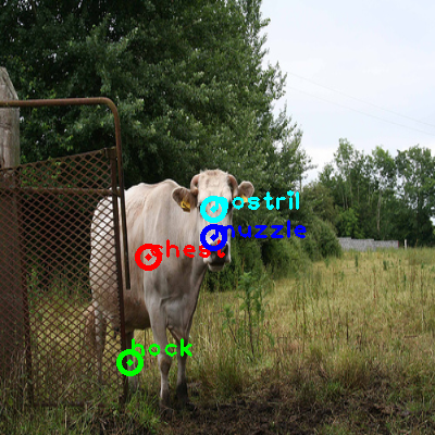 2010_001548-cow_0_ppm10.png
