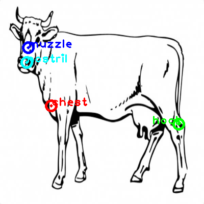 cow_0003_dipart10.png