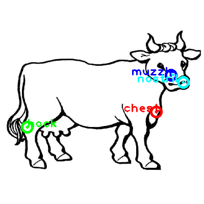 cow_0007_dipart10.png