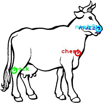 cow_0021_dipart10.png