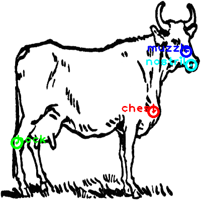 cow_0029_dipart10.png