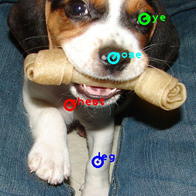 2008_000078-dog_0_ppm10.png