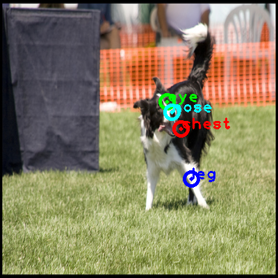 2008_000863-dog_0_ppm10.png