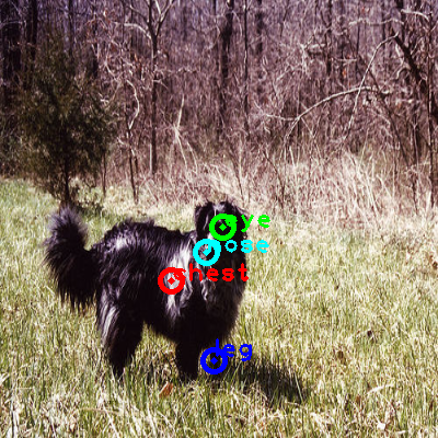 2008_001285-dog_0_ppm10.png