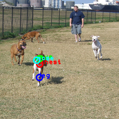 2008_001420-dog_0_ppm10.png