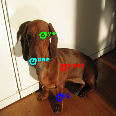 2008_001479-dog_0_ppm10.png