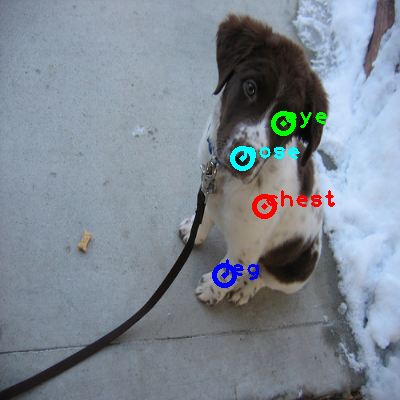 2008_002239-dog_0_ppm10.png
